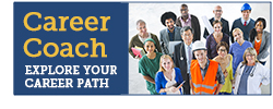 Career Coach: Explore Your Career Path